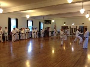 shohei-ryu, uechi-ryu, masters, camp, decosta, nakahodo, nakasone, higa, karate, martial arts